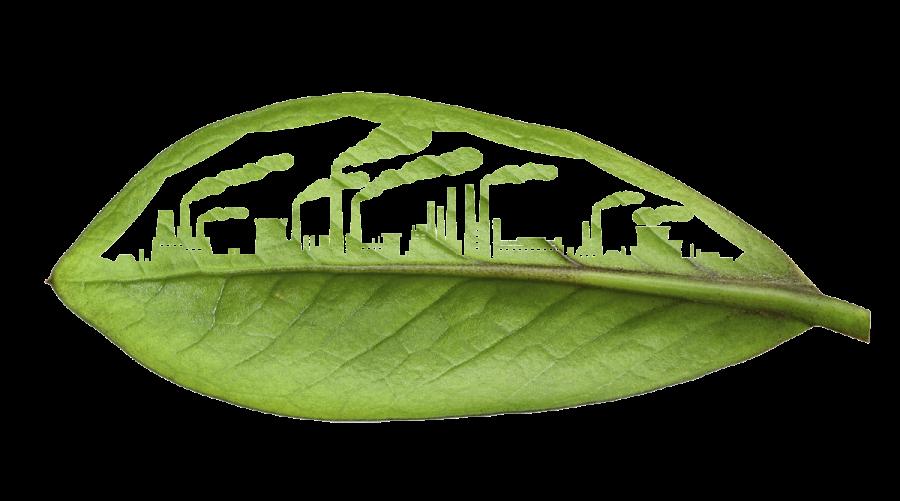 leaf-building-merge-WEB
